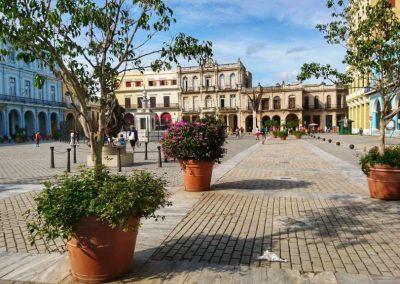 Plaza Vieja06