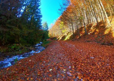 drum spre cascada Varciorog