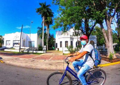 Paseo Montejo2
