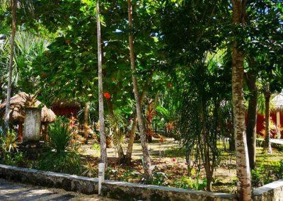 Gran Cenote2