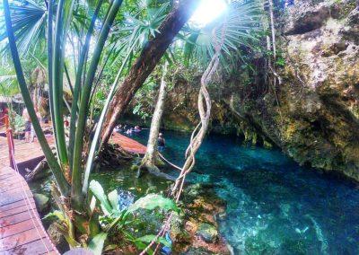Gran Cenote6