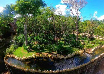 Insula jaguarilor si pumelor2